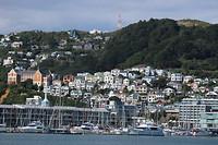 Wellington 12