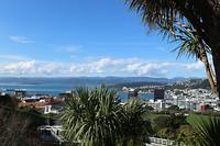 Wellington 14