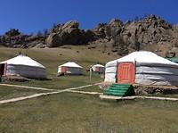 De yurt of gert
