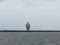 Mens zittend op de dijk Lelystad - Enkhuizen.