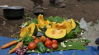 Mooie verzameling groentes