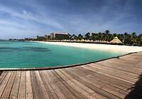 Empty Palm Beach...