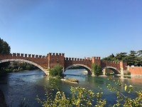 Scaligero brug