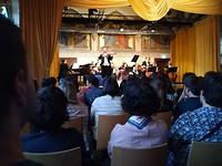 Salonorkest met Steh Geiger