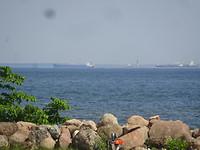 Schepen liggen voor de haven van Narva, 50km verderop