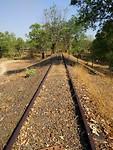 Rail track in Pine Creek
