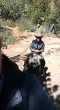 Plezier te paard