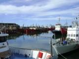 Haven Mar del Plata
