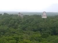 Uitzicht over Tikal