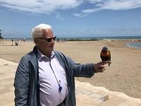 Aan de wandel met een papegaai.