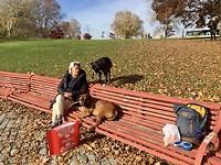 Even pauze in het park.