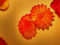 190410 Chihuly_05