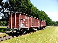 210617 wagon