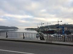 Haven Navia.