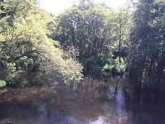 Rivier Parga nabij Baamonde.
