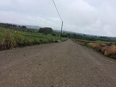 Mooie route, veel lange rechte paden vandaag.