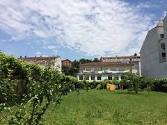 Enorme tuin achter de albergue.