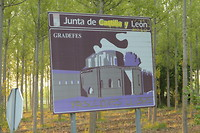 Ze willen hier bij Leon horen, en alléén Leon.