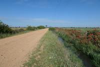Eerste km's gescheurt over dergelijke paden.