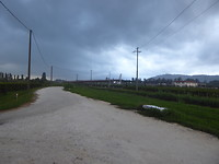 Veel regen vandaag, af en toe straten blank met 10cm water