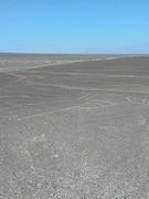 Hands Nazca