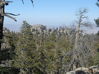 Jacinto State Park