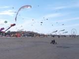 Lots of kites over Rimini  beach