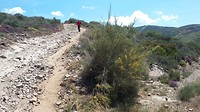 From 1550 to 550 m on this path in 35 degrees C was quite exhausting