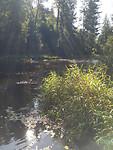 Mooi riviertje bij de gesloten camping