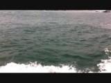 Boottocht op de Bosporus!