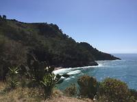 De Tyrreense zee