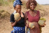 ananasverkopers in Congo