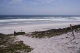 lekker wandelen aan de kust