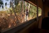 in de boom klimmem voor een kijkje binnen in de truck