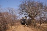 en kamperen tussen de acacia's