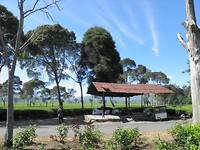 Theeplantage Malabar