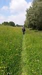 NS-wandeling over grasdijk