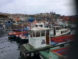 De haven voor rondvaartboten
