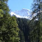 Junfrau/ Kleine Scheideg