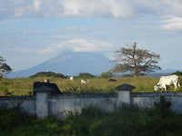 Ometepe as seen from the mainroad onshore