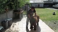 Vriendelijke Fransman met zijn hond