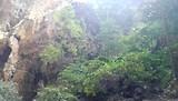 Tham Phraya Nakon Cave