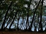 Natuurpark Krka 4