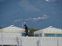 Vluchteling op het dak!