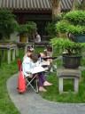 In een park in Chengdu zijn kinderen boompjes aan het natekenen...