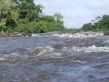 Suriname 192