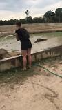 De tweede werkdag met de olifanten