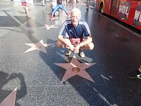 Walk of Fame Bee Gees