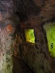 Aquarium grot in de tuin van PW