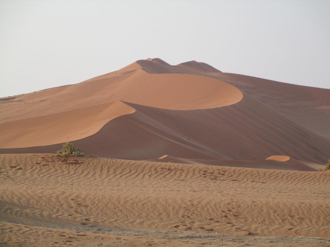 Mooie hoge rode zandduinen